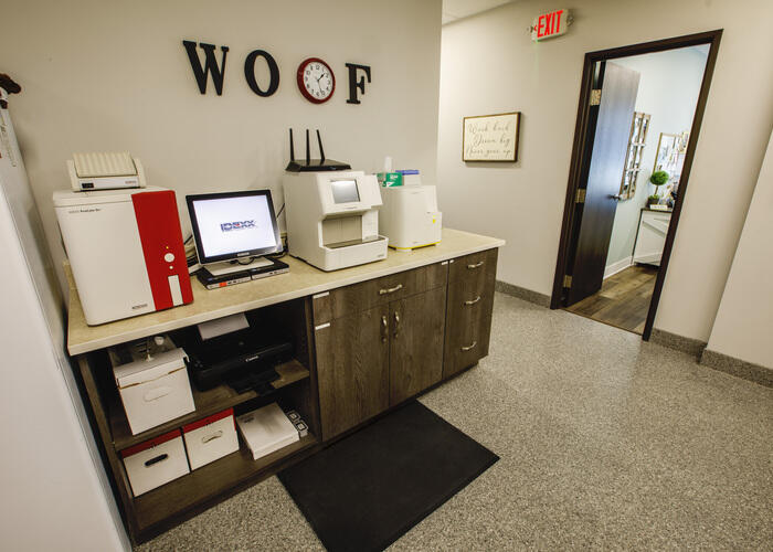 dog room in the clinic